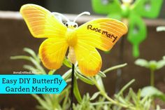 Easy DIY Butterfly G