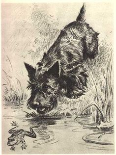 M. Dennis Print of Scotty dog with frog