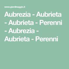 Aubrezia - Aubrieta - Aubrieta - Perenni - Aubrezia - Aubrieta - Perenni