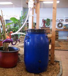 1000 images about diy rain barrels on pinterest rain for Diy small rain barrel