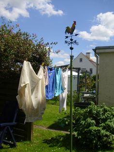 Wetterhahn 2015 http://fc-foto.de/36432485
