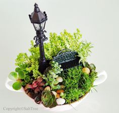 I'm sure you've all seen a miniature garden or two out there. If not, then you really should Google 'fairy garden' or 'miniature garden'. There are even books on fairy gardening. Really. These sweet, adorable little scenes can capture the imagination, and make you wish you were wee enough to jump into them! Mini gardens…