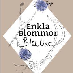 BLÅKLINT - WWW.ENKLABLOMMOR.SE