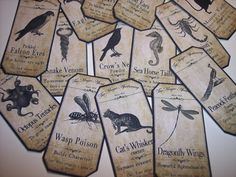 Steampunk Animal Magic Apothecary Labels Set of 15 by mreguera, $8.00
