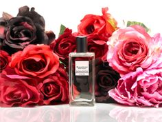 Red Rose  and Peach Blossom  Passionale, delicate, precious to be worn