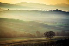 Tuscan Hills - www.davidbutali,net