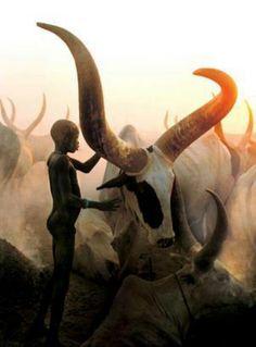 Dust, smoke, ochre, bone...shades of Africa (and my soul) | Photo: Dinka boy with ox, South Sudan