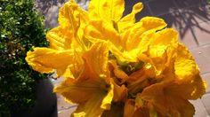fiori del mio giardino: Frutti antichi
