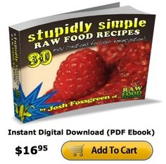 STUPIDLY SIMPLE RAW FOOD RECIPES