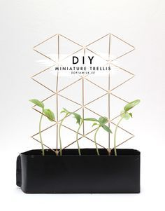 DIY | Miniature Trellis Tutorial