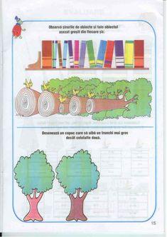 Carte Educativa Pentru Prescolari Activitati Matematice 5 7 Ani Map, Activities, Iris, Maps, Bearded Iris