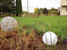 IMG_3148 W 6, Pumpkin, Outdoor, Outdoors, Pumpkins, Outdoor Living, Garden, Squash
