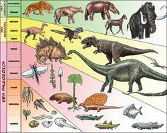 Hace 65 millones de años desaparecieron los grandes reptiles dinosaurios y comenzó el desarrollo de los mamíferos. Estos pequeños animales que dejaron el suelo para trepar a los árboles. El salto a la vida sobre los árboles se debió, posiblemente, a la necesidad de sobrevivir.