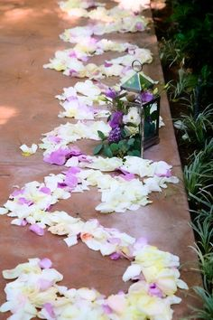Romantic Outdoor Wedding at Hartley Botanica    Somis, CA