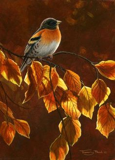 Image result for birds and fall leaves paintings