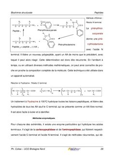 Biochimie structurale Acide Aminé, Fails, Sheet Music, Biochemistry, Music Sheets, Thread Spools