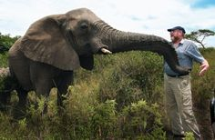 """Lawrence Anthony - Saved the Baghdad Zoo and called """"The Elephant Whisperer"""" - Courtesy of the Guardian.co.uk"""
