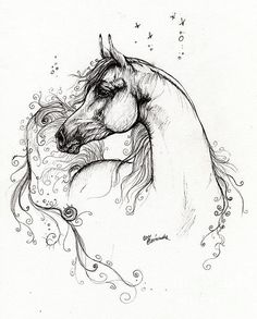 Arabian Horse Pen Drawing by Angel Tarantella by jeri
