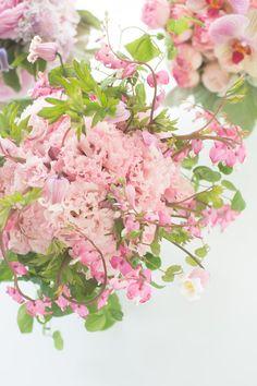 世界一好きな花屋といってもらえるように blog du I'llony 芦屋と南青山に店を構える花屋アイロニーオーナー日記: 2014年5月 アーカイブ