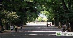 What to See in Lucca in Just 1 Day