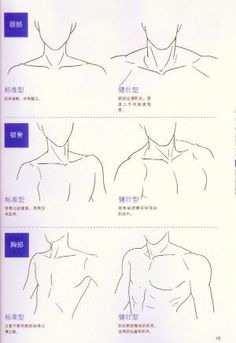 Human Figure Drawing Reference Neck and shoulders artist reference anatomy drawing tutorial. Human Figure Drawing, Figure Drawing Reference, Guy Drawing, Drawing Skills, Drawing Lessons, Manga Drawing, Drawing Techniques, Drawing People, Drawing Tips