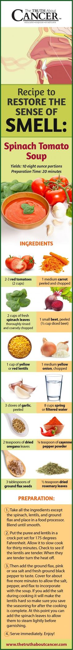 Restoring your sense of smell after standard cancer treatment can seem like a complicated task. In this article Deborah Oke explains how your sense of smell is connected to your brain and what you can do to re-establish this connection. A recipe for spinach tomato soup is included to help restore your sense of smell! Just click on the recipe and you'll get redirected or just pin the recipe to cook it later...