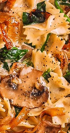 Creamy Farfalle Pasta with Spinach, Mushrooms, and Caramelized Onions. This simple meatless Italian dinner is pure comfort food! The bow-tie shaped pasta is perfectly matched with rich and buttery Parmesan sauce! Casserole Recipes, Pasta Recipes, Dinner Recipes, Cooking Recipes, Dinner Ideas, Italian Dishes, Italian Recipes, Pasta Dinners, Meals