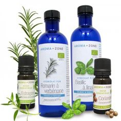 8 à 10 gouttes d'huiles essentielles de basilic exotique ou d'estragon, de citron ou de carotte dans la bouteille d'huile de colza ou de lin réservée aux crudités.