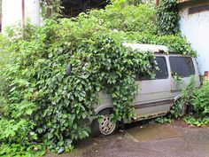 Van covered in vegetation on the abandoned island of Ikeshima, Japan