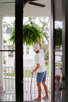 how to get big healthy ferns - Holy City Chic Hanging Ferns, Hanging Plants Outdoor, Plants For Hanging Baskets, Outdoor Pots, Best Indoor Plants, Hanging Planters, Porch Plants, House Plants, Backyard Landscaping
