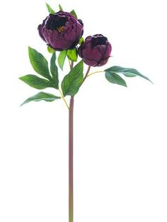 Premium silk flowers give your bridal bouquets forever beauty, like these gorgeous eggplant purple and wine peonies. Shop Afloral.com for your budget wedding.