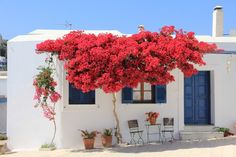 Beautiful Paros architecture