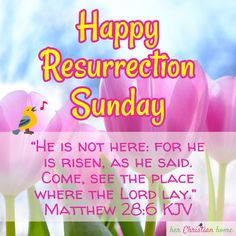 """Celebrating the Most Important Event in History Today. I'm so thankful that we serve a risen Lord & Savior! Happy Resurrection Sunday / """"He is not here: for he is risen, as he said. Come, see the place where the Lord lay. Easter Devotions, Easter Bible Verses, Bible Verses Quotes, Bible Scriptures, Good Morning Tuesday Wishes, Good Morning Quotes, Happy Resurrection Sunday, Happy Easter Quotes, My Redeemer Lives"""