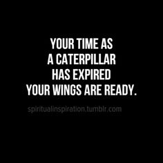 as we submit your college applications, this is how I feel about you ~ spread your wings and fly!!!