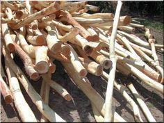 Görbe akácfa oszlopok Zulu, Texture, Wood, Crafts, Inspiring Pictures, Surface Finish, Manualidades, Woodwind Instrument, Timber Wood