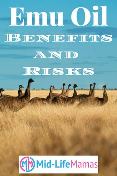 Emu Oil: Benefits and Risks -