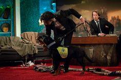 Ylvis' 2013 Halloween Episode from Season 3 of I kveld med YLVIS.