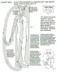 "Our Pathway to the Truth • lucifelle: Polarity Therapy Charts 1-10 ""The..."