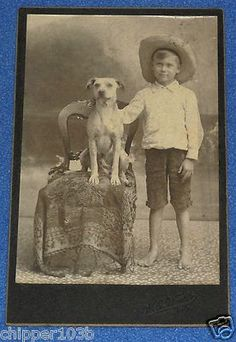 """"""" ADORABLE BOY AND HIS DOG """" ANTIQUE CABINET PHOTOGRAPH, H. E. WIEST (1800'S)"""