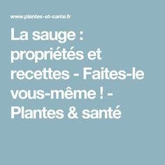 La sauge : propriétés et recettes - Faites-le vous-même ! - Plantes & santé