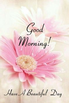 Good Morning Beautiful Pictures, Good Morning Picture, Good Morning Flowers, Good Morning Good Night, Morning Pictures, Good Morning Greetings Images, Good Morning Greeting Cards, Good Morning Messages, Good Morning Images