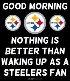 Steelers Meme, Steelers Pics, Here We Go Steelers, Football Memes, Steelers Stuff, Football Season, Pittsburgh Steelers Pictures, Pittsburgh Steelers Wallpaper, Pittsburgh Steelers Football