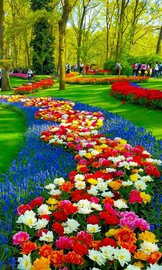 Visiting The Outdoors Garden Plants And Flowers Most Beautiful Gardens, Beautiful Flowers Garden, Flowers Nature, Amazing Flowers, Pretty Flowers, Amazing Gardens, Dream Garden, Garden Art, Garden Plants