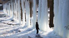 Maandag 5 januari 2015: In de Zuid-Koreaanse provincie Chungcheongbuk-do controleert een ambtenaar de enorme ijspegels die zich onder een brug hebben gevormd.