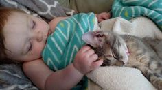 baby & kitty friend sound asleep but together in their dreams