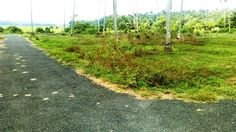 40 cent Residential Land near Palakkal,