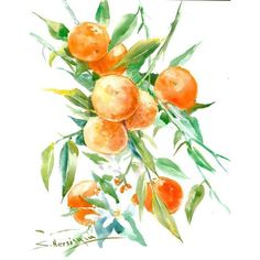 Orange tree painting apricot art orange green pastel colors 16 x 12... ❤ liked on Polyvore featuring home, home decor, wall art, mint green home accessories, tangerine tree, tree painting, mint green home decor and peach tree