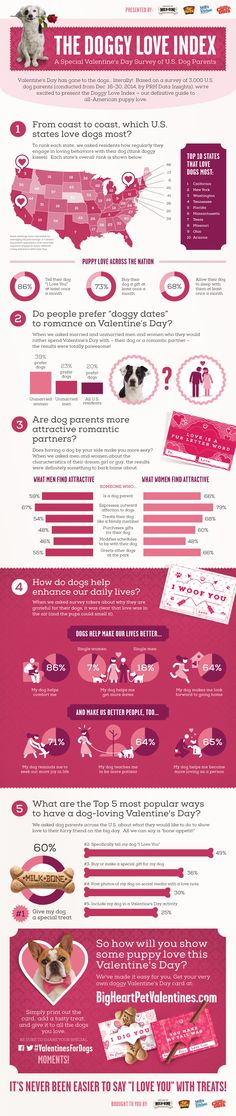 Nothing says love like a colorful infographic about the affection we have for our pets!