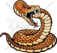 rattle snake head - Google Search