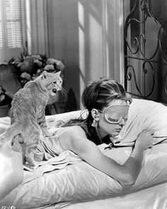 "Amazon.com: Audrey Hepburn with Cat 1961 ""Breakfast at Tiffany's"" 8x10 Silver Halide Archival Quality Reproduction Photo Print: Posters & Prints"
